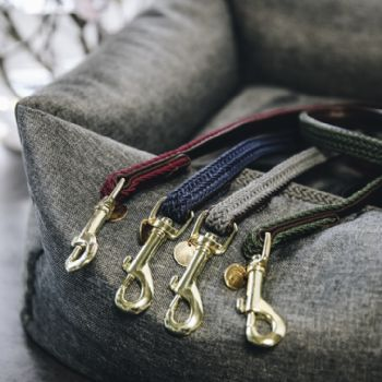 Kentucky Plaited Nylon Dog Lead